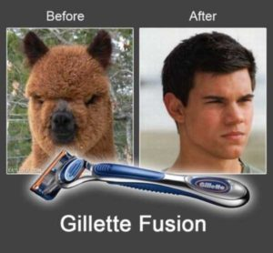 funny-before-and-after-photos-73948